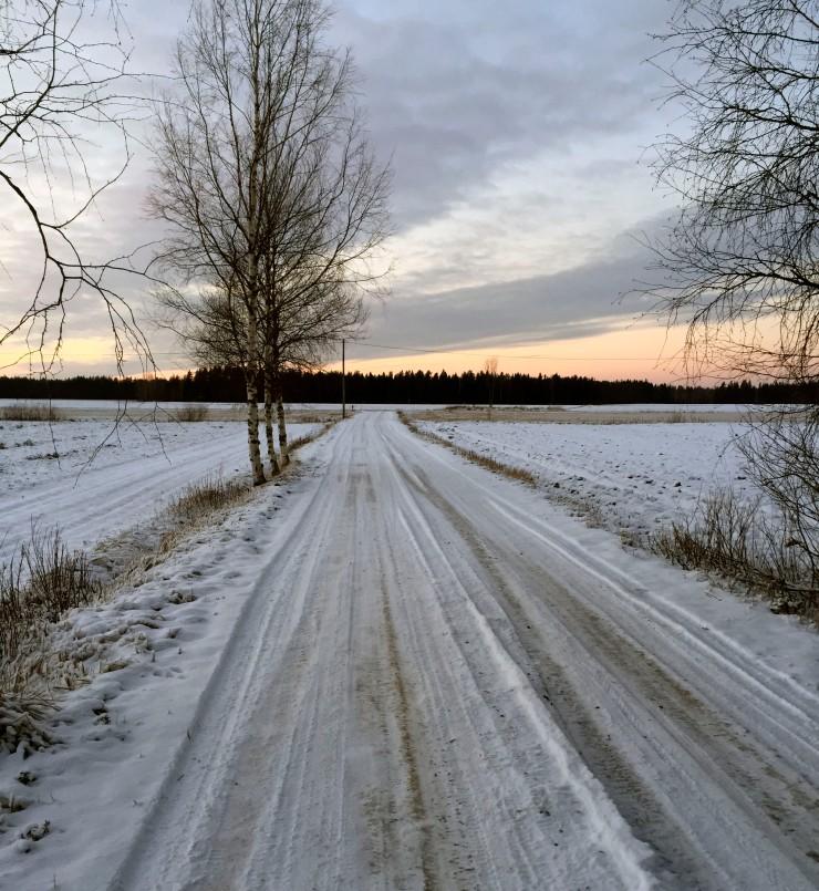 suomi1004